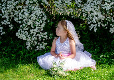 Little bride in white dress and veil playing. A miniature bride waits in the garden among the flowering bridal veil flowers Stock Photos