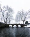 A little bridge in Bemmel. A small bridge across the pond in Bemmel in the winter stock images