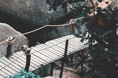 Little bridge in jungle Stock Photography