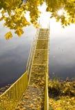 Little Bridge on the river. Autumn limb of tree falling  maple leaves Stock Images