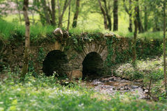 Little bridge on a river. Nice little stone bridge in a forest Royalty Free Stock Images
