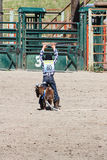 Little Britches Rodeo Stock Photography