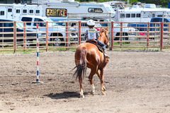 Little Britches Rodeo Stock Photo
