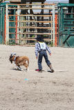 Little Britches Rodeo Royalty Free Stock Photo