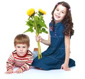 Little brother and sister with a bouquet of Royalty Free Stock Photo