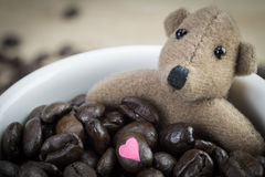 Little brown bear and coffee beans  in white mug Royalty Free Stock Photo