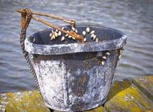 Little Bucket Stock Photo