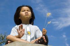 Little Buddha royalty free stock photo