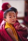 Little buddhist monk Stock Photography