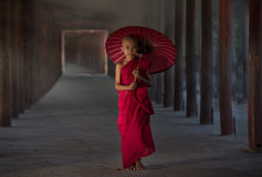 Little Buddhist monk royalty free stock image