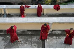 Little Buddhist monks Stock Photography