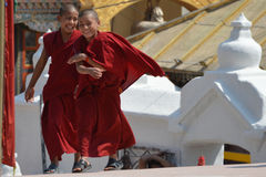 Little buddhist monks Stock Images