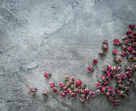 Little buds of dog roses scattered, copyspace, topview Stock Images