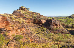 Little Bungles Kunnanurra Stock Photos