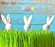 Little bunny and Easter eggs on green grass Stock Images