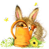 Little bunny and garden tools, nesting box, flowers.  watercolor illustration Stock Image