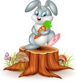 Little bunny holding carrot on tree stump Stock Photo