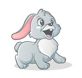 Little bunny Royalty Free Stock Photos