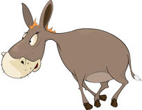 The little burro. Cartoon Royalty Free Stock Photo