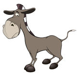 The little burro. Cartoon Royalty Free Stock Photos