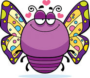 Little Butterfly in Love Stock Images