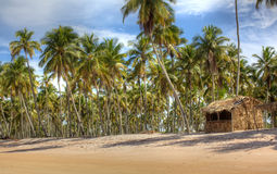 Little cabin on the beach, vacation landscape Stock Photo