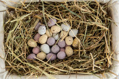 Little candy easter eggs in a basket Royalty Free Stock Photos