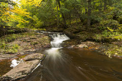 Little Carp River Falls Stock Photography