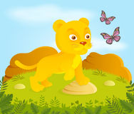 Little cartoon lion with butterflies Royalty Free Stock Photography