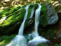 Little cascade. Little waterfall in Giant Mountains (Krkonoše) / Czech Republic Royalty Free Stock Photo