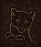 Little cat black and white Royalty Free Stock Photo