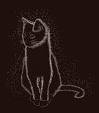 Little cat black and white, vector Stock Image