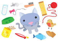 Little Cat with Typical Cat Things Royalty Free Stock Photo