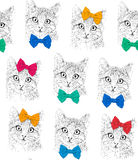 Little cats with a bows. Seamless pattern. Color graphic illustration. Background Stock Photo