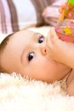Little caucasian boy drinking from the bottle Royalty Free Stock Photography