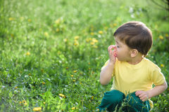 Little caucasian boy has allergies from yellow flower. Stock Photo