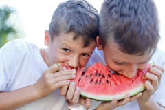 Little caucasian children eating watermelon Royalty Free Stock Photos