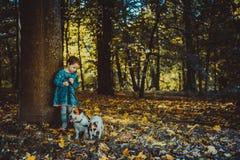 Little caucasian girl running around the autumn park with the dogs. Little caucasian girl running around autumn park with the dogs royalty free stock photography