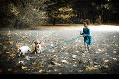 Little caucasian girl running around the autumn park with the dogs. Little caucasian girl running around autumn park with the dogs stock images