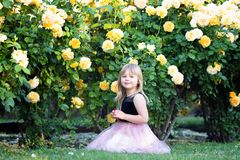 Little Caucasian girl sits on green grass in a rose garden next to yellow roses bush. Touches a rose and looks at it, smiling.  stock photo