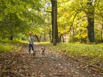 Little caucasian kids running around the autumn park with the dogs. Little caucasian kids running around autumn park with the dogs stock image