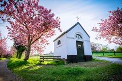 Little chapel royalty free stock image