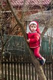A little charming girl in red dressed up on a tree between two branches stock image