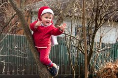 A little charming girl in red dressed up on a tree between two branches royalty free stock images
