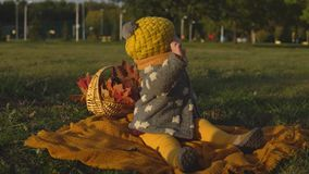 Family in sunny autumn park stock video footage