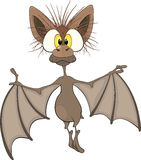 Little cheerful bat.Cartoon Royalty Free Stock Image