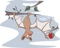 Little cheerful bat. Cartoon Royalty Free Stock Photography
