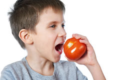 Little cheerful boy eating tomato isolated Royalty Free Stock Photography