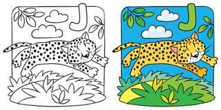 Little cheetah or jaguar coloring book. Alphabet J. Coloring picture or coloring book of little funny jumping cheetah or jaguar. Children vector illustration Stock Image
