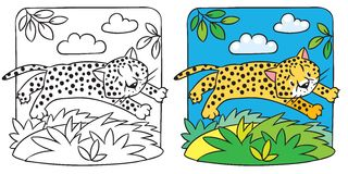 Little cheetah or jaguar coloring book. Coloring picture of little funny jumping cheetah or jaguar. Children vector illustration Royalty Free Stock Photography